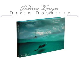 More than 15,000 people visited the Exhibition of Underwater Photography by David Doubilet in Lisbon in 2003. The exhib