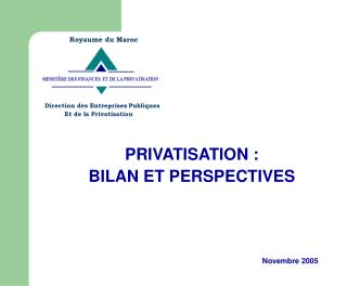 PRIVATISATION : BILAN ET PERSPECTIVES  Novembre 2005