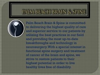 Palm Beach Brain