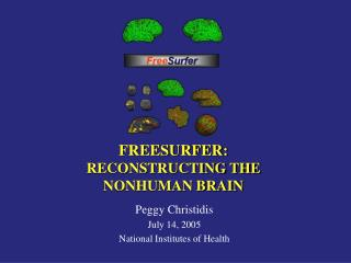 FREESURFER:  RECONSTRUCTING THE  NONHUMAN BRAIN