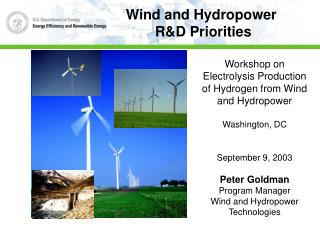 Workshop on Electrolysis Production of Hydrogen from Wind and Hydropower Washington, DC September 9, 2003 Peter Goldman