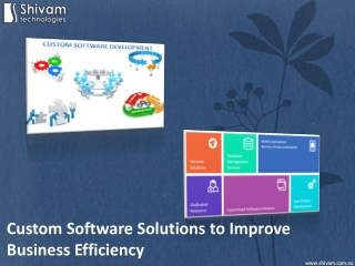 Custom Software Solutions to Improve Business Efficiency