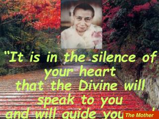 """It is in the silence of your heart that the Divine will speak to you and will guide you and  will lead you to your go"