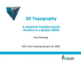 3D Topography A simplicial Complex-based Solution in a Spatial DBMS