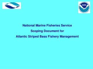 National Marine Fisheries Service Scoping Document for Atlantic Striped Bass Fishery Management