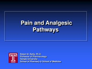 Pain and Analgesic Pathways