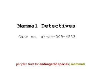Mammal Detectives