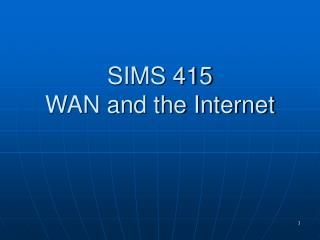 SIMS 415 WAN and the Internet
