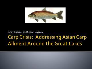 Carp Crisis: Addressing Asian Carp Ailment Around the Great Lakes
