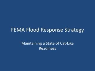 FEMA Flood Response Strategy
