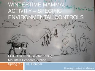 Wintertime Mammal Activity – SPECIFIC Environmental Controls