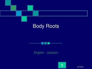Body Roots