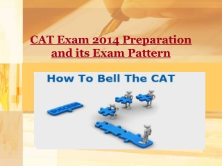 CAT Exam 2014 Preparation and its Exam Pattern