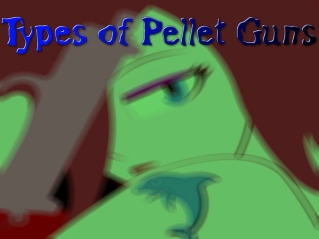 Types of Pellet Guns