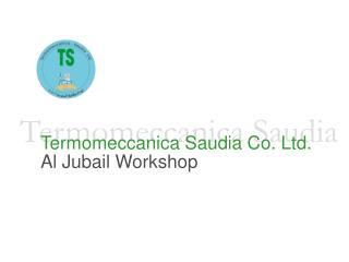 Termomeccanica Saudia