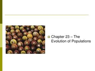 Chapter 23 – The Evolution of Populations