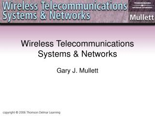 Wireless Telecommunications Systems & Networks