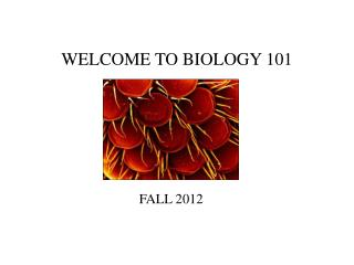WELCOME TO BIOLOGY 101