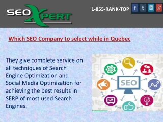 Which SEO Company to select while in Quebec
