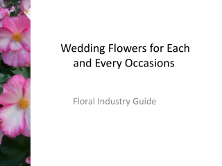 Wedding Flowers for Each and Every Occasions