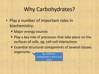 Why Carbohydrates?