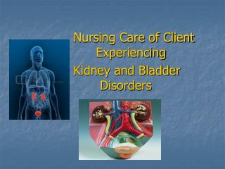 Nursing Care of Client     	Experiencing Kidney and Bladder 			 Disorders
