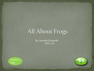the frogs life cycle