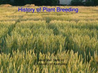 History of Plant Breeding
