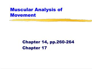 Muscular Analysis of Movement