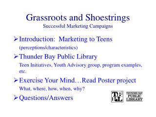 Grassroots and Shoestrings Successful Marketing Campaigns