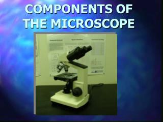 COMPONENTS OF  THE MICROSCOPE