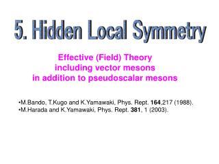 5. Hidden Local Symmetry