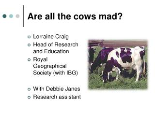 Are all the cows mad?