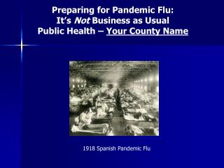 Preparing for Pandemic Flu: It's  Not  Business as Usual Public Health –  Your County Name