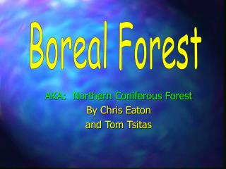 AKA:  Northern Coniferous Forest By Chris Eaton and Tom Tsitas