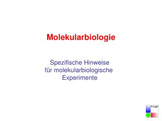 Molekularbiologie