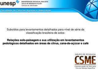 Subsídios para levantamentos detalhados para nível de série da classificação brasileira de solos: