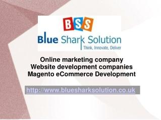 Magento ecommerce Development to enhance on internet busines