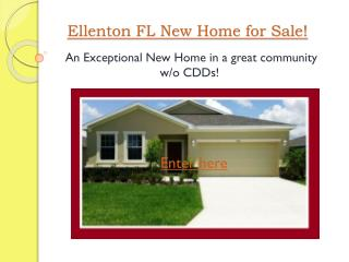 ellenton fl new home for sale