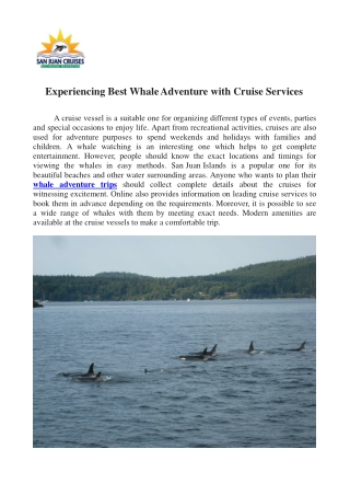 Experiencing Best Whale Adventure with Cruise Services