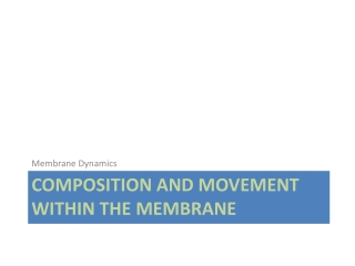 Composition and Movement within the membrane