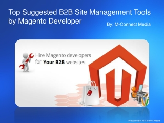 Top Downloadable B2B Site Management Tools by Magento Develo