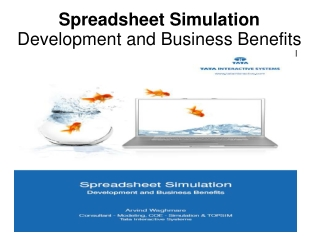 Spreadsheet Simulation Development and Business Benefits