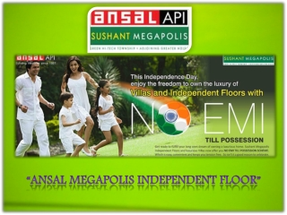 Ansal Megapolis Independent Floors, Ansal Megapolis Floors