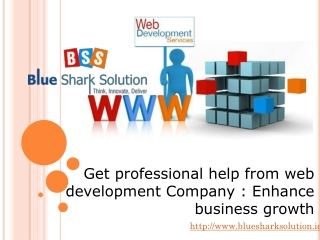 Get professional help from web development-enhance business