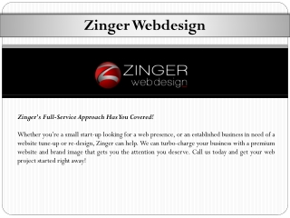 Zinger Web Design Service