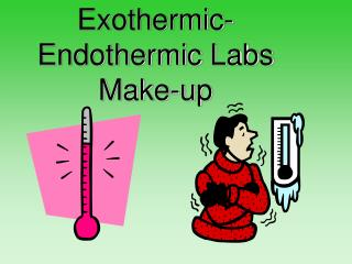 Exothermic-Endothermic Labs Make-up