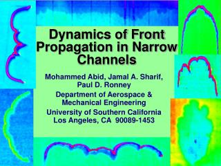 Dynamics of Front Propagation in Narrow Channels