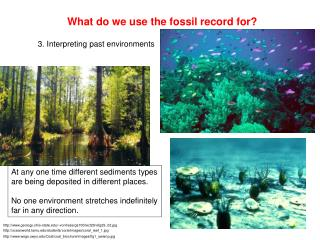 What do we use the fossil record for?