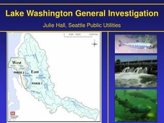Lake Washington General Investigation Julie Hall, Seattle Public Utilities